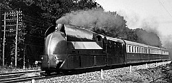 PLM-Carenee-221
